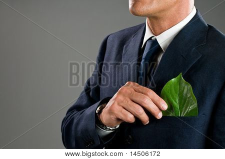 Stylish businessman holding a fresh green leaf in his pocket. Green business concept, take care of the environment!
