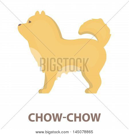 Chow-chow vector illustration icon in cartoon design