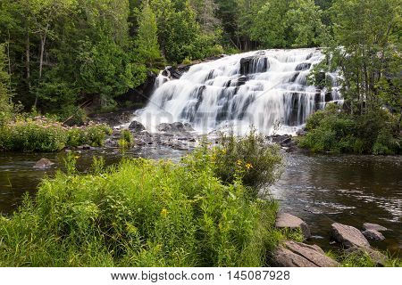 Bond Falls in the Upper Peninsula of Michigan. Wild flowers grow along the river banks.