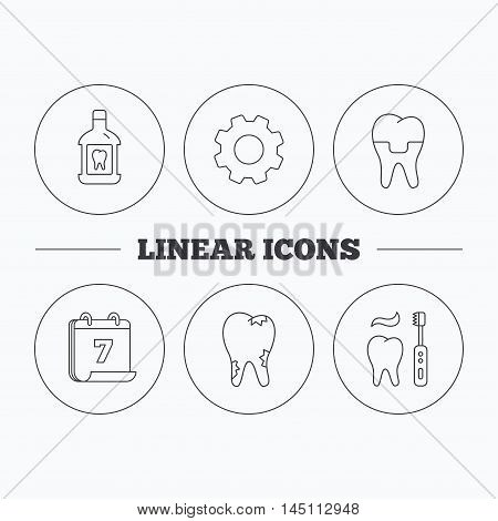 Caries, dental crown and mouthwash icons. Brushing teeth linear sign. Flat cogwheel and calendar symbols. Linear icons in circle buttons. Vector