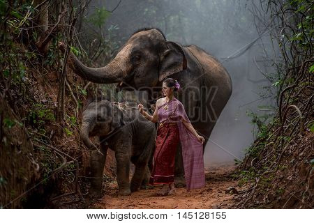 Beautiful Asian Woman Wears Thai Dress With Her Elephant, Elephant Village, Surin, Thailand