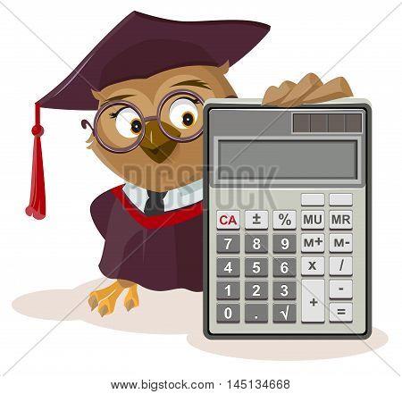 Owl teacher and calculator. Isolated on white vector cartoon illustration