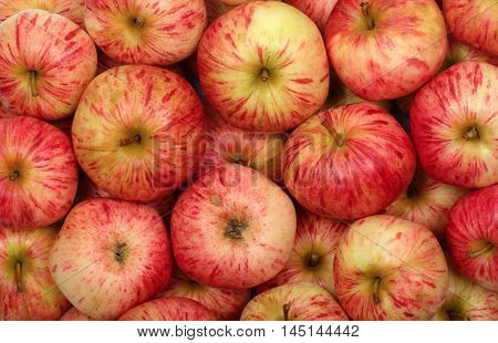 Close up view of ripe red apples for background