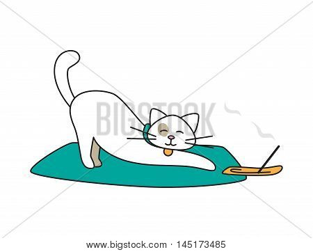 Vector isolated personage. Cat doing yoga isolated on white.