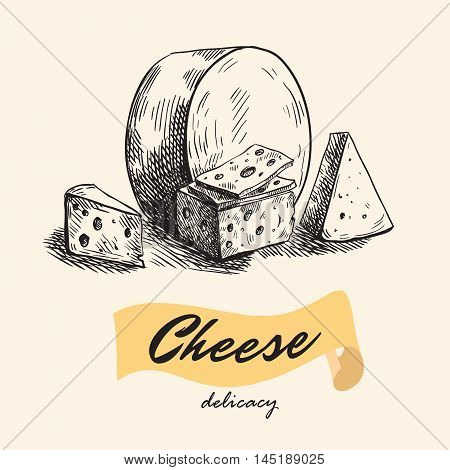 natural cheese. slice of cheese. cheesemaking. set of vector sketches
