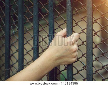 Asian woman's hand holding a Steel custody.