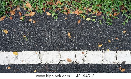 Asphalt Road Texture With Green Grass And Orange Falling Leaves