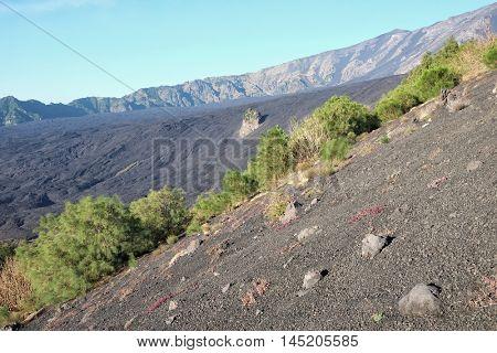 Bove Valley fron Rinatu Mount in Etna Park, Sicily