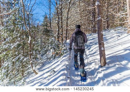 Young man snowshoeing in winter in the Quebec eastern townships region Canada