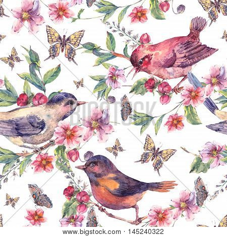 Vintage watercolor floral seamless background, birds on a blooming branch with gentle pink flowers, butterflies and twigs, natural botanical watercolor illustration