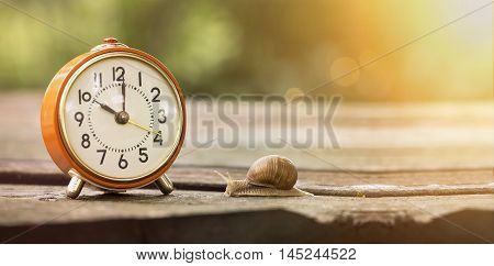 Retro alarm clock and slowly snail - time concept banner