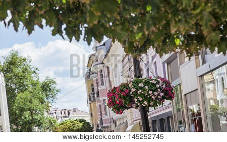 Hanging colorful flowers in pots on a street pole in front of a secession buildings, downtown Plovdiv, Bulgaria.