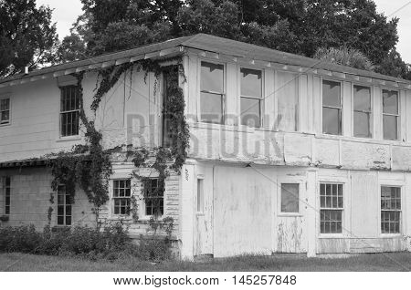 Old house with vines growing on the exterior