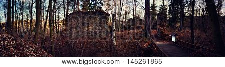 Historic Forest Ruins Bridge Landscape Panorama