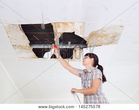 Young Woman Cleaning Mold On Ceiling.ceiling Panels Damaged Huge Hole In Roof From Rainwater Leakage