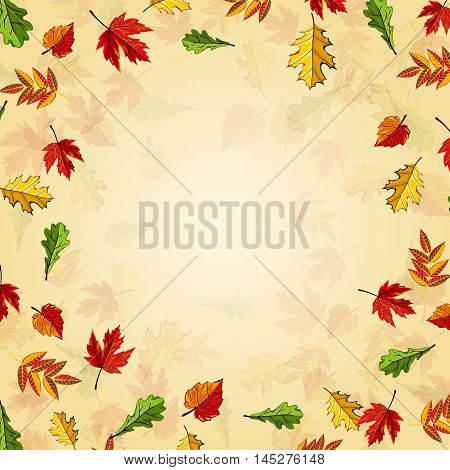 Autumn leaves fall on border vector illustration. Background with hand drawn autumn leaves. Autumn time. Design elements. Autumn leaves concept. Different autumn leaves. Autumn background.