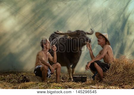 Two old farmers are laughing with happiness
