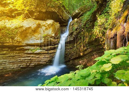 Beautiful waterfall streaming from a rock in the forest