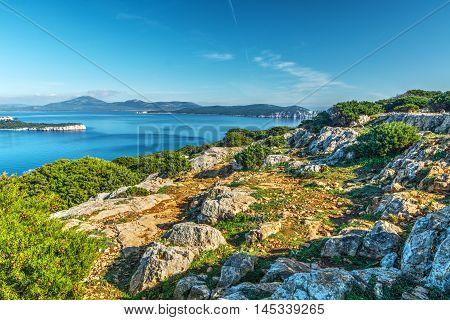 a rocky shore in Capo Caccia Sardinia