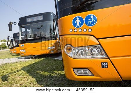 Sofia, Bulgaria - August 31, 2016: New modern busses for public transportation are shown in a row in a parking lot. Physically disabled people and old people signs.