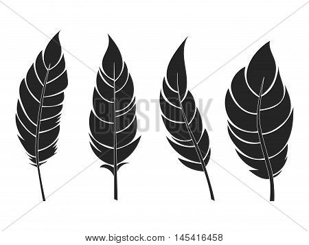 Decorarive black flat feathers set. Icons isolated on a light background.Tribal objects. Vector illustration.