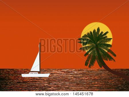 Yacht Under Sail at Sunset with sun behind a palm tree