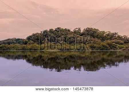 Laguna Grande Lake On Cuyabeno River In Cuyabeno Wildlife Reserve Jungle In A Background Ecuador