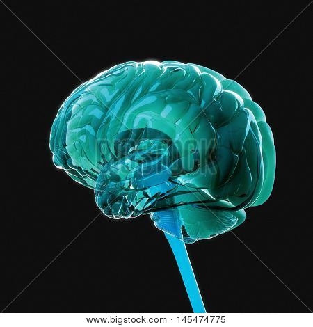 Brain power, colorful, creative thoughts. Problem solving. Powerful human mind. 3D illustration.