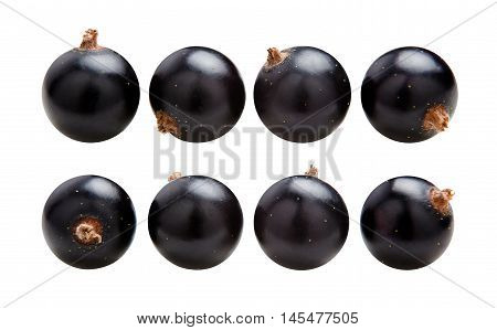 Black currants. Ripe juicy berries of black currant isolated on white background