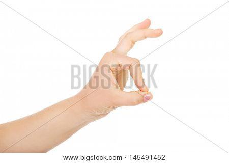 Woman hand gesturing ok sing