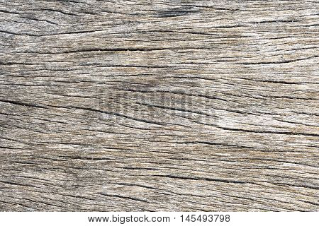 brown wooden texture / Old wood background / Big Brown wood plank wall texture background / Texture of wood background closeup