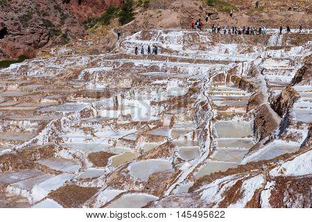 Salt Ponds Of Maras, Peru