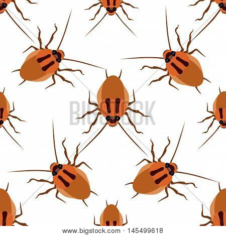 Seamless pattern cockroach on a white background. Cockroach beetle isolated vector