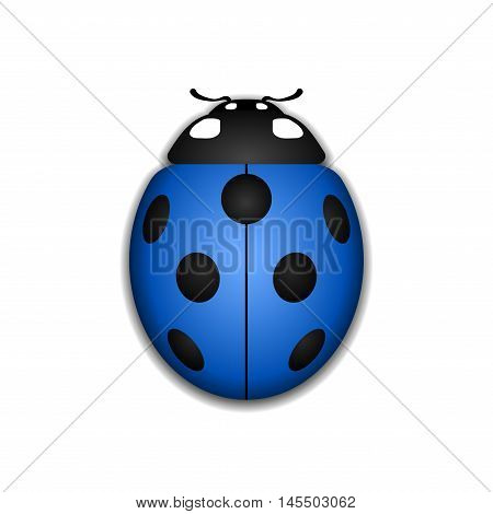 Ladybug small icon. Blue lady bug sign isolated on white background. 3d volume design. Cute colorful ladybird. Insect cartoon beetle. Symbol of nature spring or summer. Vector illustration