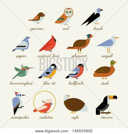 Bird icon collection. Different birds species like: owl toucan hummingbird bullfinch and more vector illustration birds