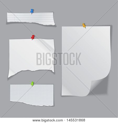 A set of the fragmentary crumpled pieces of paper pinned on a wall with a gray background. The isolated clean standard sheets. A vector illustration of realistic pure pieces with a shadow.