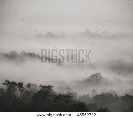 YOGYJAKARTA/INDONESIA - 10 NOVEMBER 2015: Fog over the forest and the buddhist themple of Borobudur at sunrise