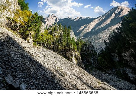 Rocky Canyon With Spruce Trees
