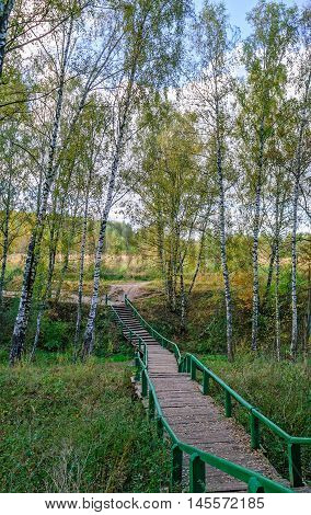 Wooden pathway with handrails across autumn forest