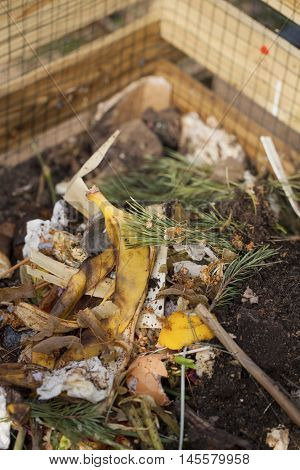 Image of compost bin in a garden