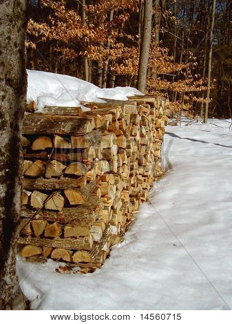 Wood Pile in Winter