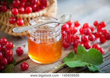Jar Of Honey And Guelder Rose Or Viburnum Berries. Selective Focus.