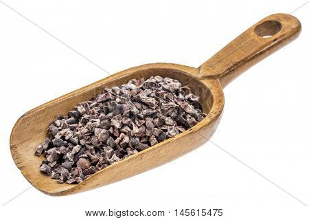 cacao nibs on a rustic wooden scoop, isolated on white