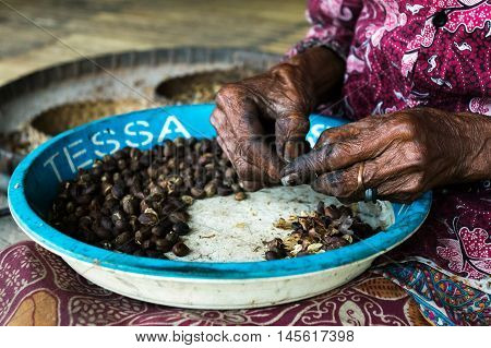 FLORES, INDONESIA - AUGUST 22, 2016: A woman cleans coffee beans in Bena traditional village in Bajawa, Flores, Indonesia.