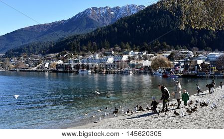 Queenstown, New Zealand - Aug 27, 2016. People feeding seagulls at Lake Wakatipu.