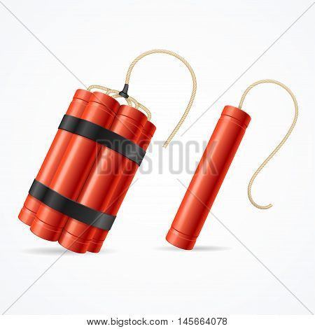 Detonate Dynamite Bomb Set For Web. Different Types. Vector illustration