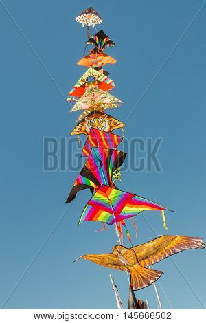 Colorful kites flying in the air against blue sky on a sunny day