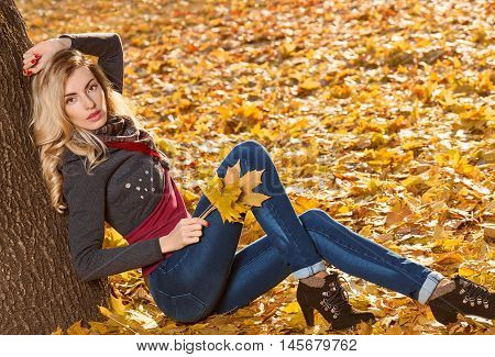 Fall Fashion. Woman in Stylish Autumn Outfit in park. Blond Model in fashion knitted autumn clothes. Fall orange leaves around. Girl Relax Enjoy nature. Sadness Autumn outdoor fashion background