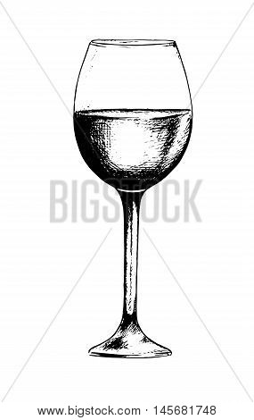 Isolated champagne glass. Black and white etching wine glass for decoration. Elegant tableware.