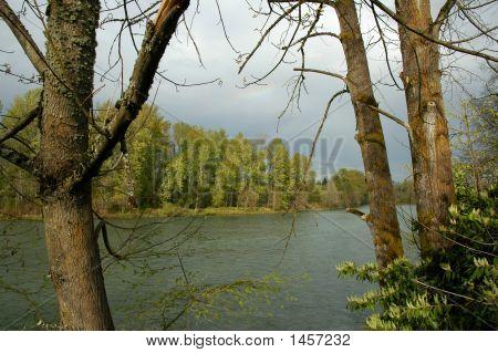 Flussufer-Rainbow
